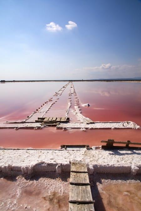 Visite de Narbonne Hémisphère Sud et le blog des yeux plus grands que le monde