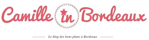 découverte de la Route des Vins de Bordeaux blog Camille in Bordeaux
